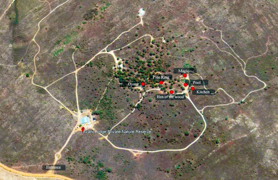 Layout or the units and facilities at Avani
